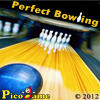 Perfect Bowling Mobile Game