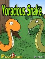 Voracious Snake Mobile Game